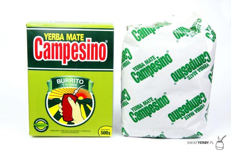 Campesino burrito and green tea srodek