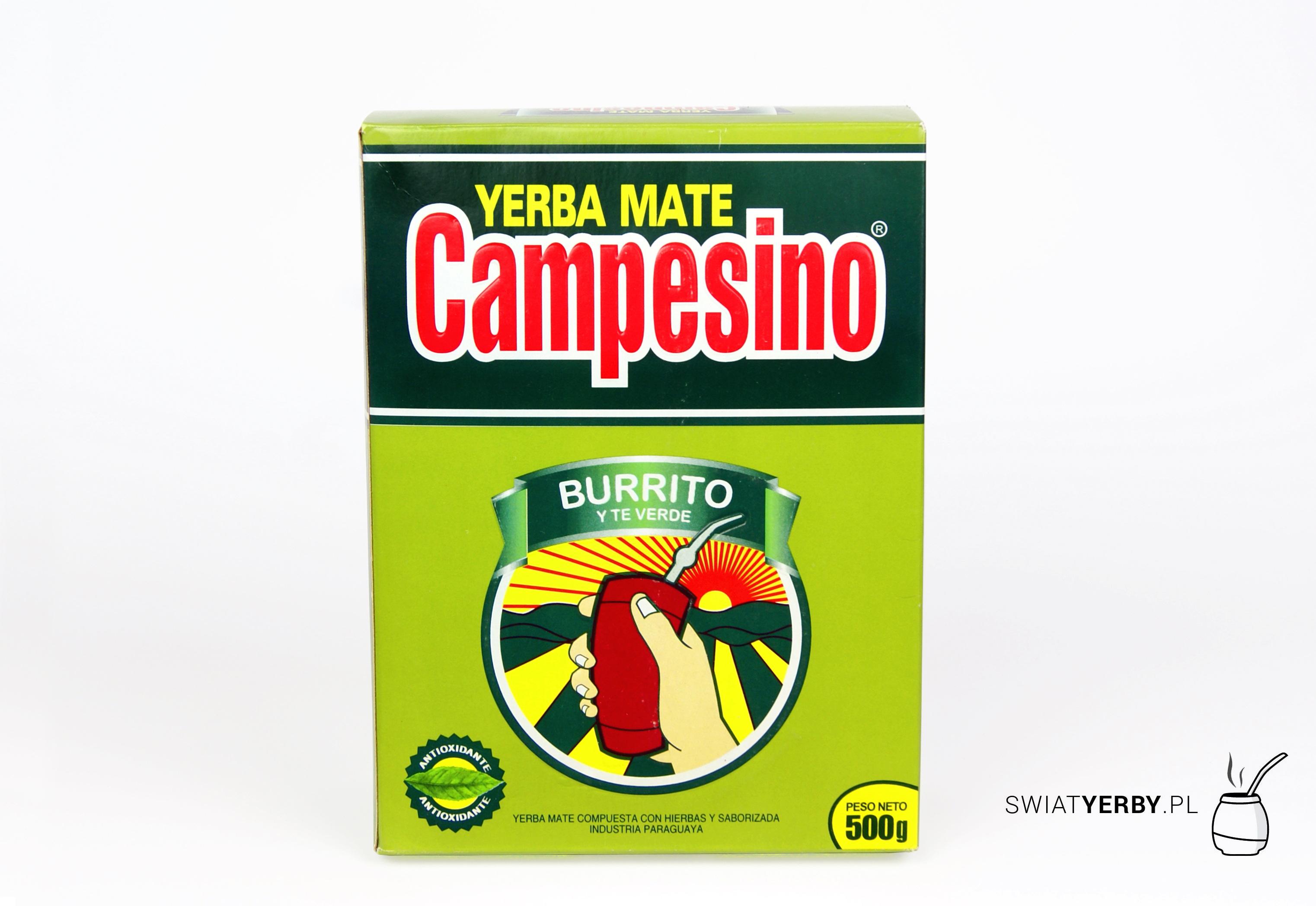 Campesino burrito and green tea (burrito y te verde)